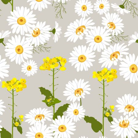 Seamless vector illustration with daisies and wildflowers. For decoration of textiles, packaging, web design. Иллюстрация