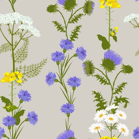 Seamless vector illustration with wildflowers on a gray background. For decorating textiles, packaging and wallpaper.