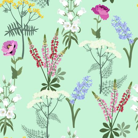 Seamless vector beautiful illustration with wildflowers on a green background. For decoration of textiles, packaging, web design.