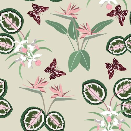 Beautiful tropical orchids, strelitzia and butterflies on a gray background. Seamless vector illustration. For decorating textiles, packaging, wallpaper.