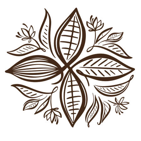 Cocoa beans illustration. Chocolate cocoa beans Vectores