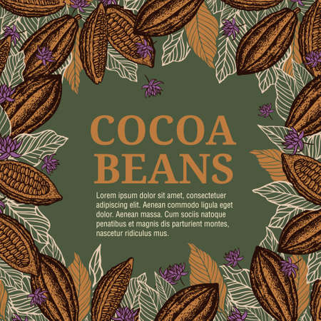 Cacao beans plant, Vector exotic cacao plants 向量圖像