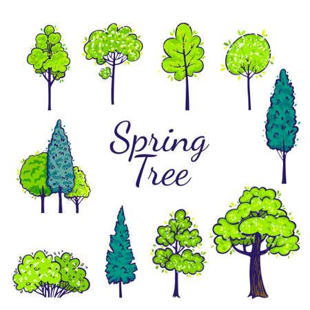 Zestaw wiosna drzewo. Wektorowa kolekcja drzew.
