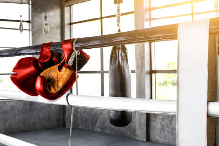Hanging boxing gloves for training in the gym