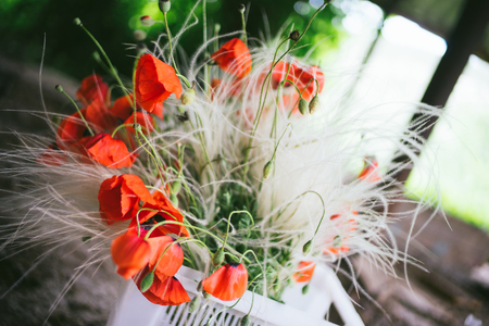 A bouquet of red poppies in a white plastic box for the delivery of plants. Concept of botanical design. Standard-Bild - 124857659