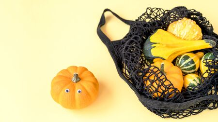 A small decorative pumpkins in a black color string shopping bag for a supermarket. Concept of autumn harvest festival and Halloween