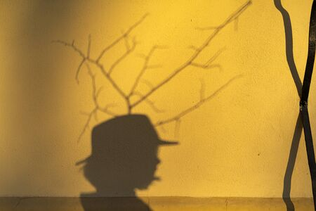 Shadow of a boy with long hair in a cowboy hat on a yellow wall. Lit by the setting sun. From the guy head the branches looking like horns Stockfoto