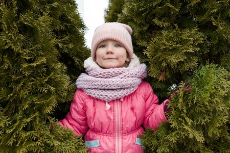 A four-year-old girl in winter clothes wearing a hat and jacket standing between thuja conifers. New Year or Autumn Concept