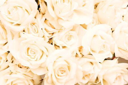 Weißer cremefarbener elfenbeinfarbener künstlicher Blumenhintergrund für verschiedene Designzwecke. Konzept des Frühlings, Muttertag, Tag der Frauen 8. März, Hochzeitstapete. Selektiver Fokus Standard-Bild