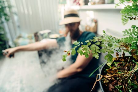 A man in a straw hat smoking through a veil of smoke. Tropical plants in the foreground. Unhealthy addiction. Retreat at home restore. Selective focus