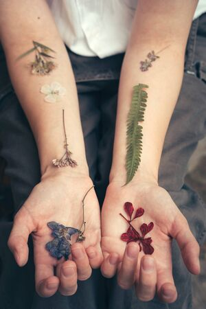 Dried flowers and leaves on a woman hands like tattoos, like veins. Contemporary art. Herbarium