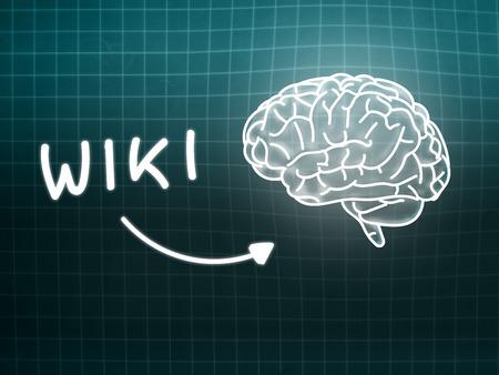 wiki: Wiki brain background knowledge science blackboard gray light Stock Photo