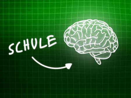 creativ: Schule brain background knowledge science blackboard turquoise light