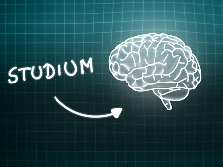 creativ: Studium brain background knowledge science blackboard turquoise light Stock Photo