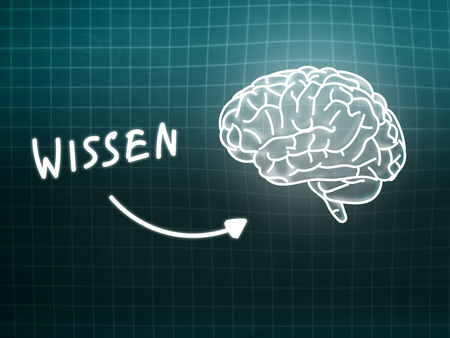 creativ: Wissen brain background knowledge science blackboard gray light