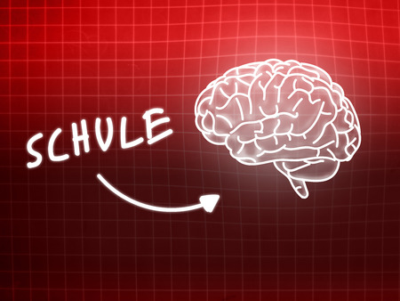 creativ: Schule brain background knowledge science blackboard red light