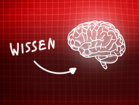 creativ: Wissen brain background knowledge science blackboard red light