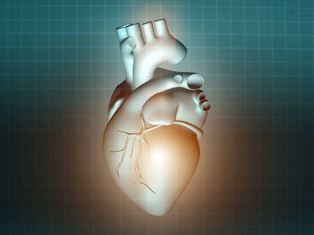 Herzkrankheit: Herzkrankheiten 3d Anatomie Abbildung Gesundheit t�rkis Lizenzfreie Bilder