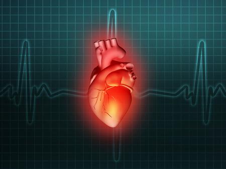 heart disease: heart disease 3d anatomy illustration health turquoise