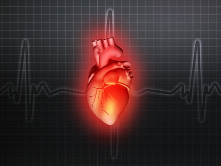 pacemaker: heart disease 3d anatomy illustration health gray