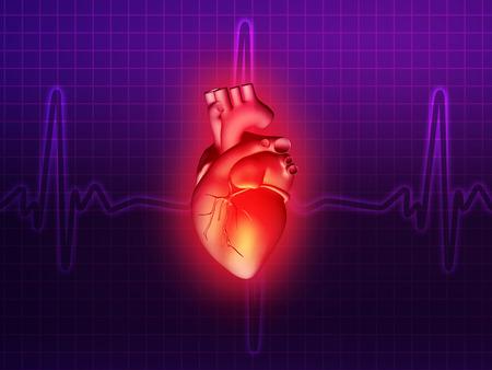 enfermedades del corazon: enfermedades del coraz�n 3d ilustraci�n de la anatom�a de la salud rosa p�rpura