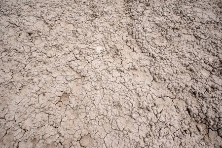 Dried and Cracked desert ground texture background