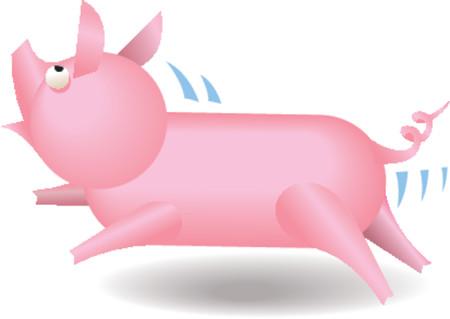 howl: A small running piglet.