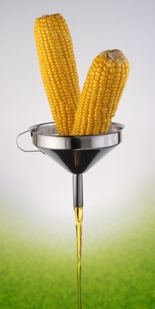 A concept of the bio-fuel from corn. Stock Photo