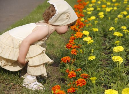 A little girl is smelling the blooming flowers. Фото со стока