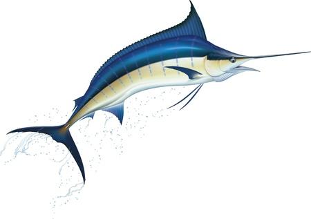 pez espada: Saltar azul ilustración vectorial marlin realista