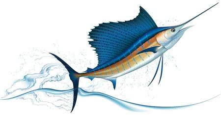 pez espada: Pez vela saltando fuera del agua ilustración vectorial realista
