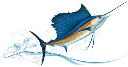 Sailfish jumping out of water  Realistic vector illustration