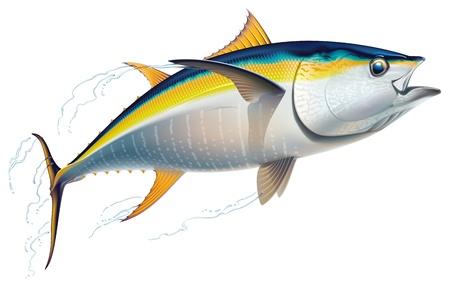 vis: Geelvintonijn in snel bewegende Realistische vector illustratie