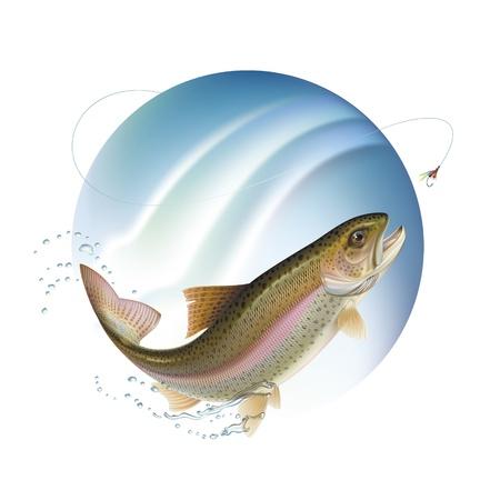 truchas: La trucha arco iris es saltar de un cebo con chorros de agua alrededor. Ilustración del vector.