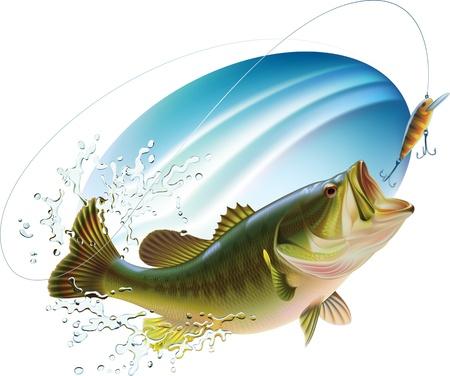 vis: Largemouth bass is het vangen van een hapje en springen in de waternevel Stock Illustratie