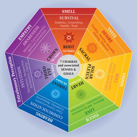 7 colori Chakra con mandala, sensi e obiettivi - per pendolo Vettoriali