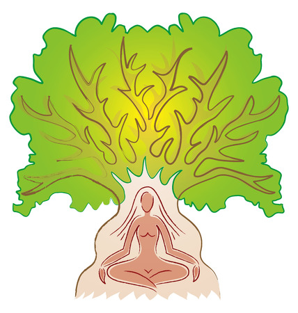 tree branch: Woman meditating in a Tree - Yoga Posture