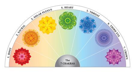 7 Chakras Color Chart - Semicircle with Mandalas 版權商用圖片 - 51484729