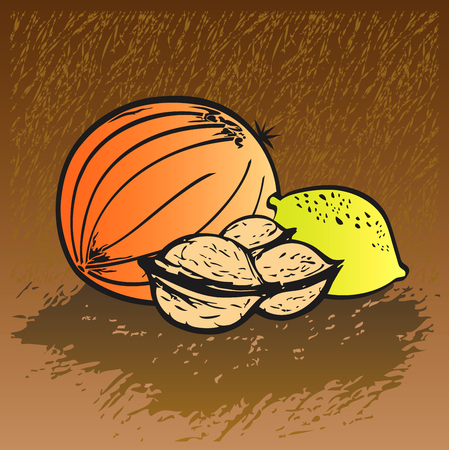 friendliness: Set of Fruits - Melon, Walnuts, Lemon Hand-drawn illustration