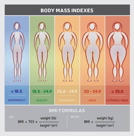 weight loss: Body Mass Index Diagram Graphical Chart with Body Silhouettes, Five Classes and Formulas Illustration