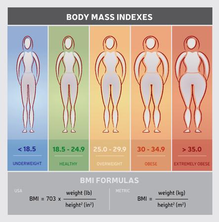 Tabla de Índice de Masa Corporal diagrama gráfico con las siluetas del cuerpo, Cinco Clases y fórmulas Foto de archivo - 60062473