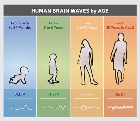 나이 차트 다이어그램에 의해 인간의 두뇌 파도 - 사람들이 실루엣 스톡 콘텐츠 - 65937107