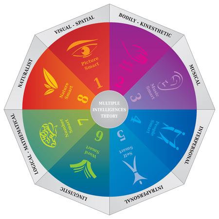 Theorie Diagramm Gardners Multiple Intelligenzen - Wheel - Coaching-Tool Standard-Bild - 70329904