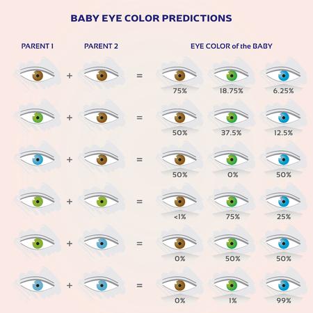 Baby Eye Color Prediction Chart - Ikony w kolorze niebieskim, zielonym i brązowym