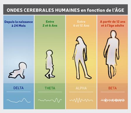 年齢チャート図による人間の脳波 - 人々のシルエット  イラスト・ベクター素材
