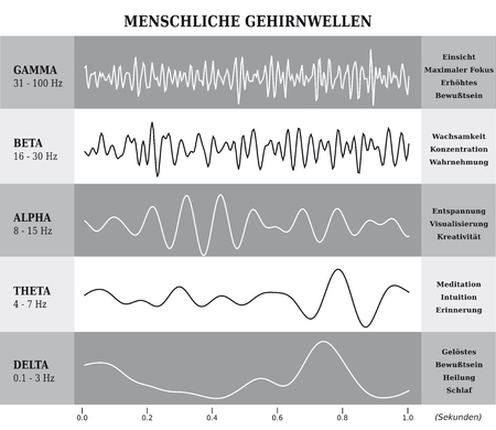 Human Brain Waves Diagram / Chart / Illustration in German - Black and White