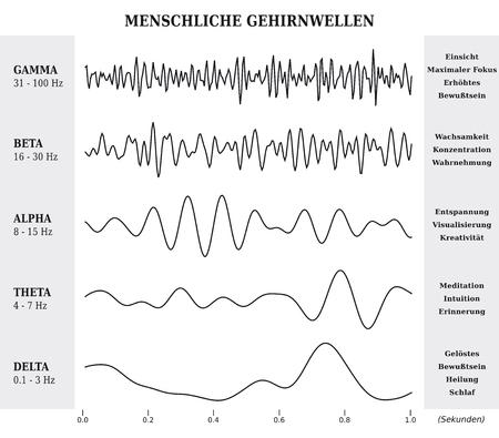 人間の脳波図  チャート  ドイツ語のイラスト - 白黒