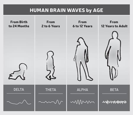 Ondas del cerebro humano por diagrama de gráfico de edad - Siluetas de personas