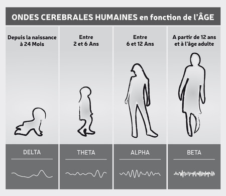 Human Brain Waves by Diagram Chart in French - People Silhouettes