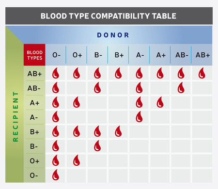 Blood Type Compatibility Table  Chart with Donor and Recipient Groups